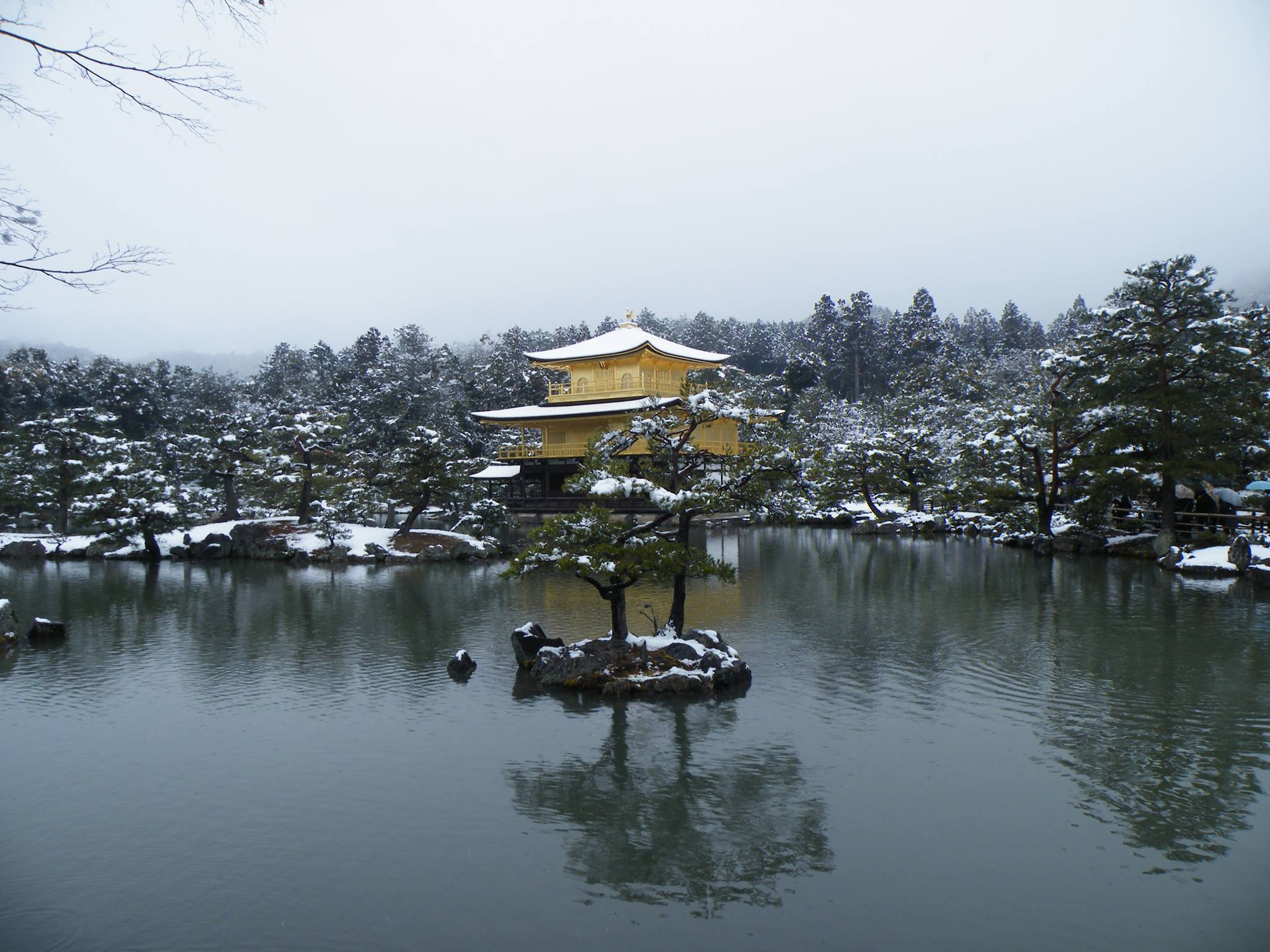 Kyoto neige 2014 5