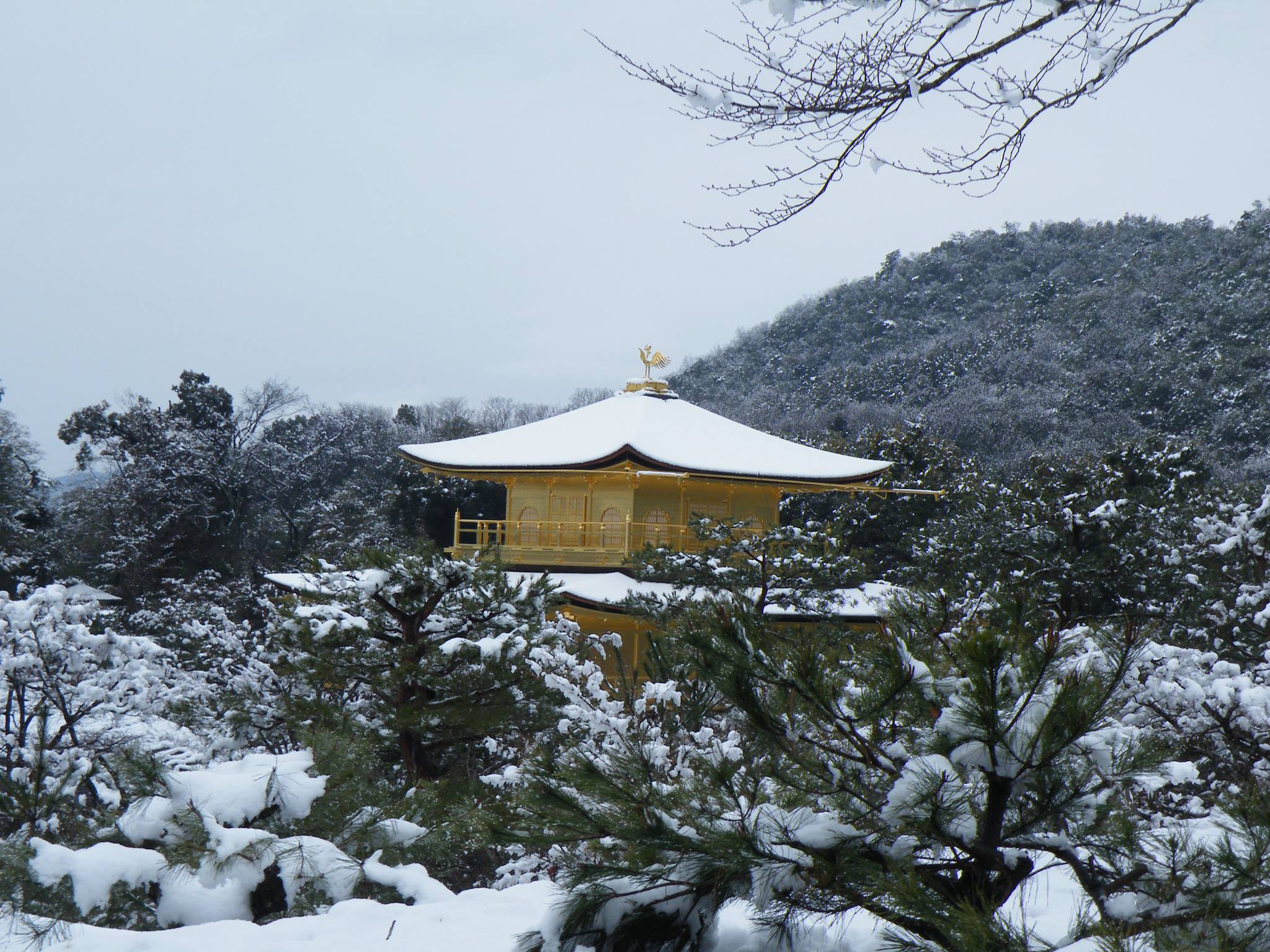 Kyoto neige 2014