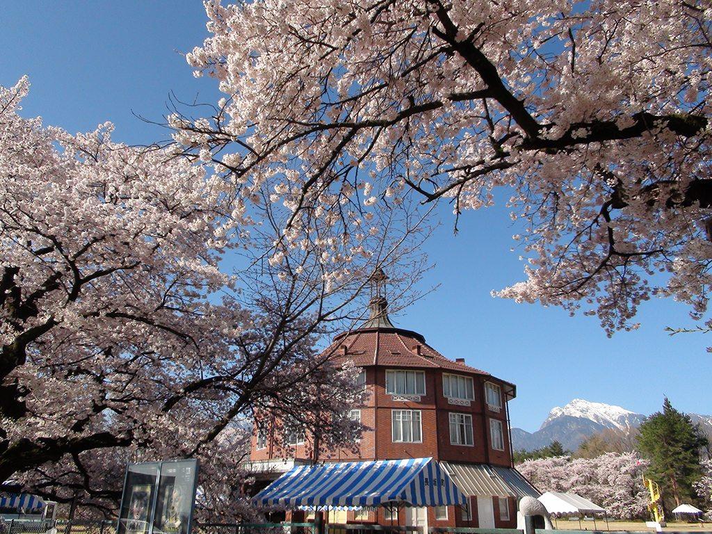 Musée_Kiyoharu_Shirakaba_A
