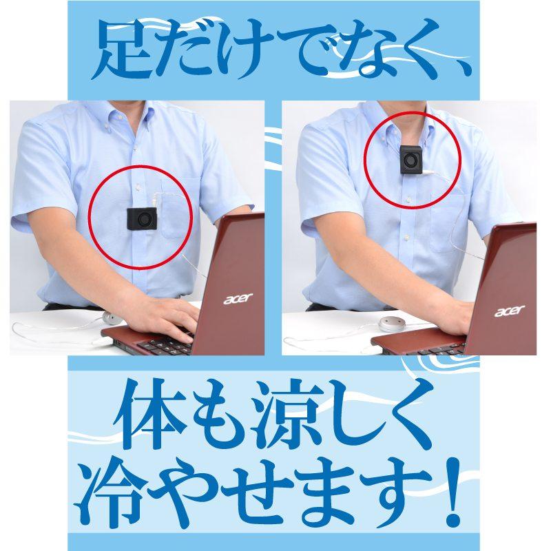 Les produits pr f r s des japonais pour lutter contre la - Produit contre les moucherons cuisine ...