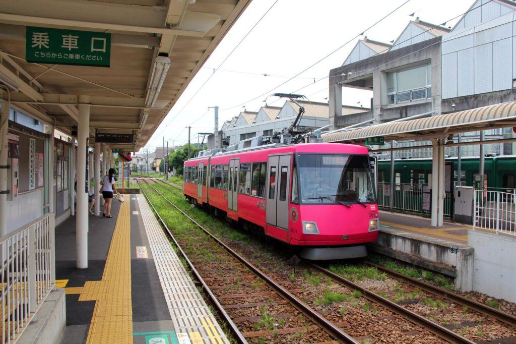Gotokuji-Tokyo41
