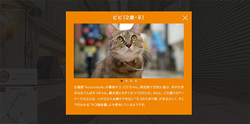 hiroshima cat map 2