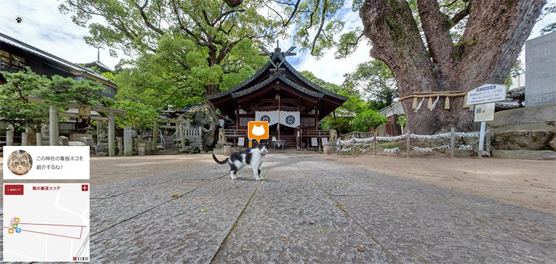 hiroshima cat map 5