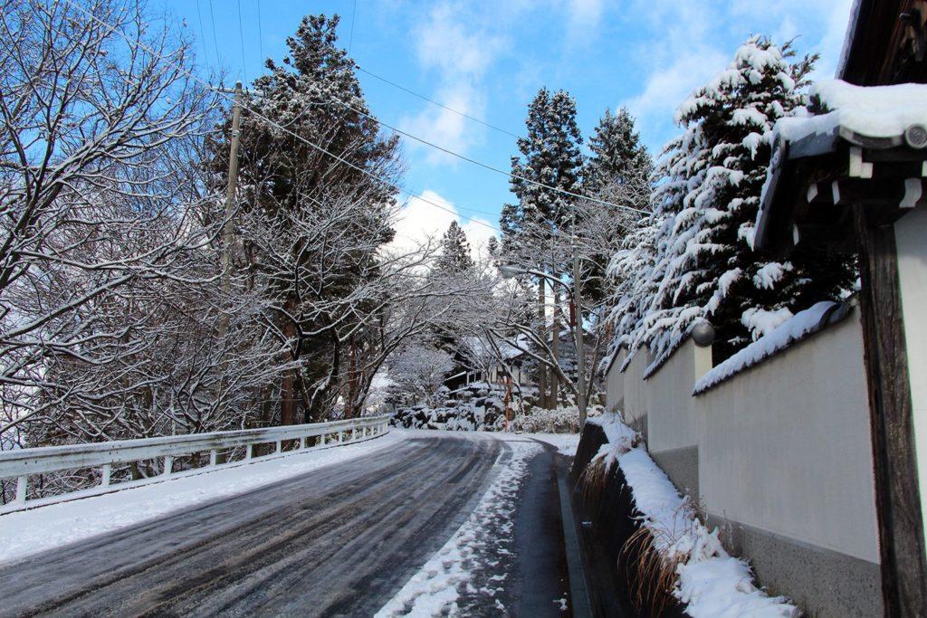 Nagano singes neige snow monkey_2
