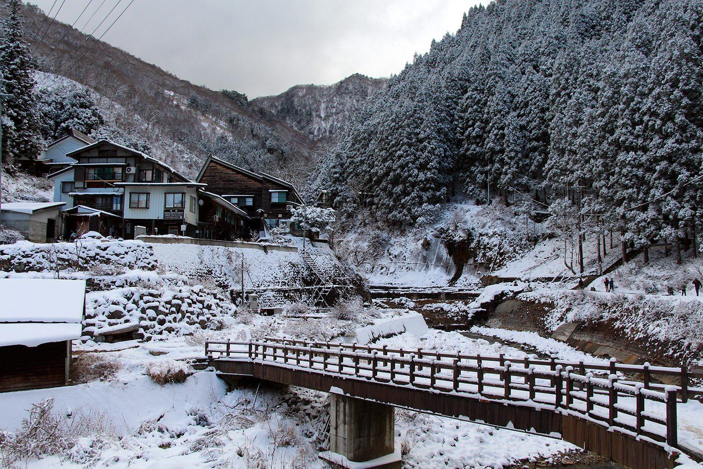Nagano singes neige snow monkey_20