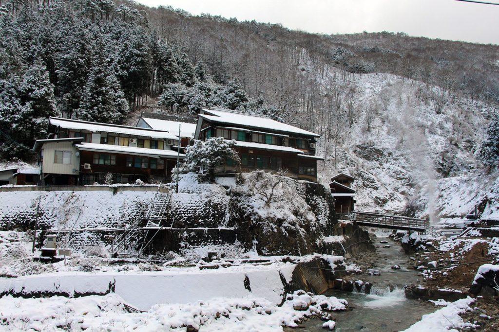 Nagano singes neige snow monkey_21