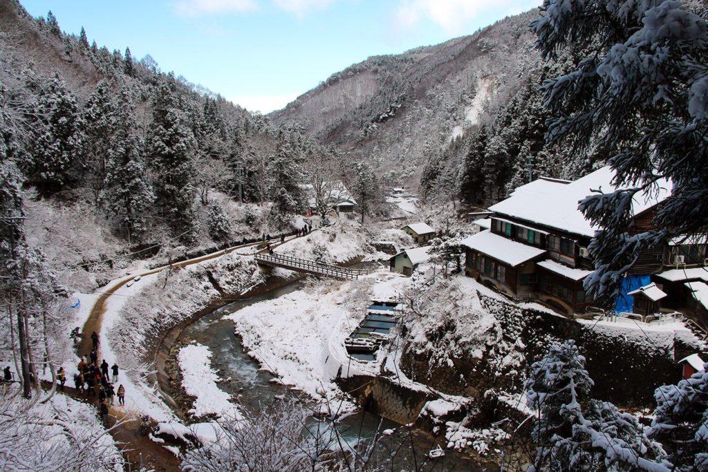 Nagano singes neige snow monkey_25
