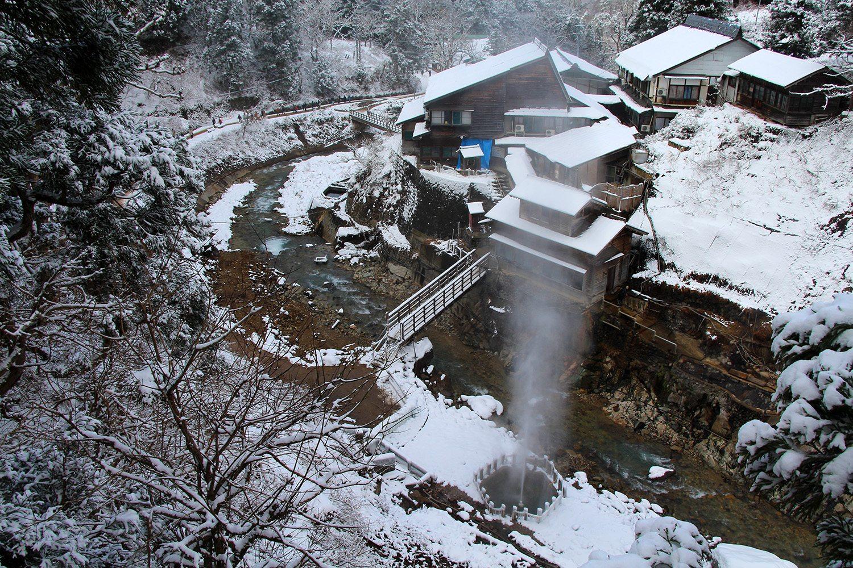 Nagano singes neige snow monkey_51