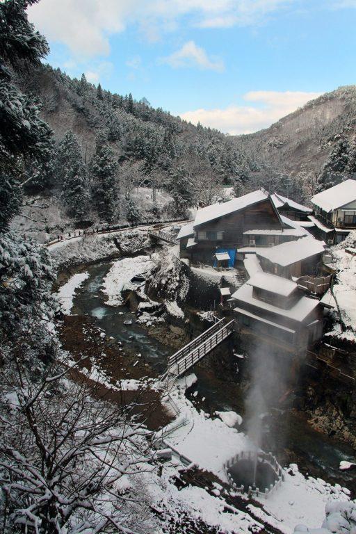 Nagano singes neige snow monkey_52