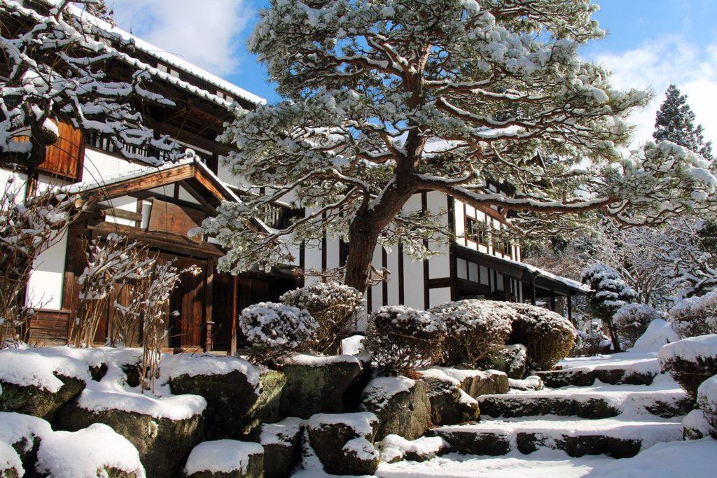 Nagano singes neige snow monkey_55