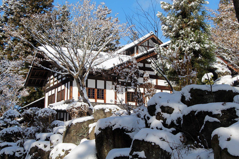 Nagano singes neige snow monkey_57