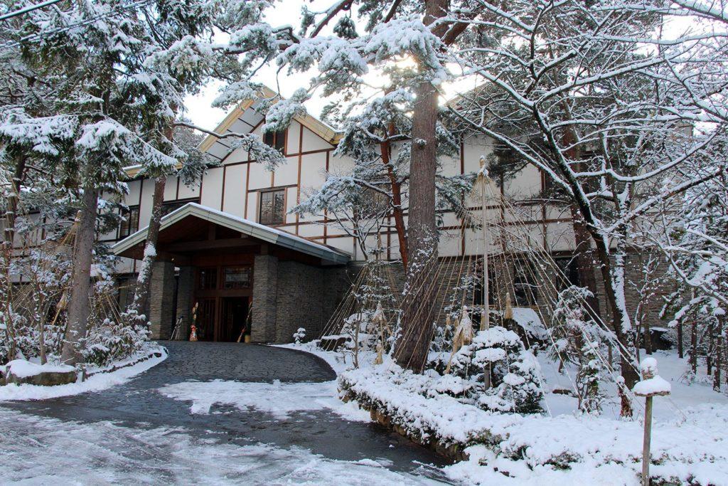 Nagano singes neige snow monkey_8