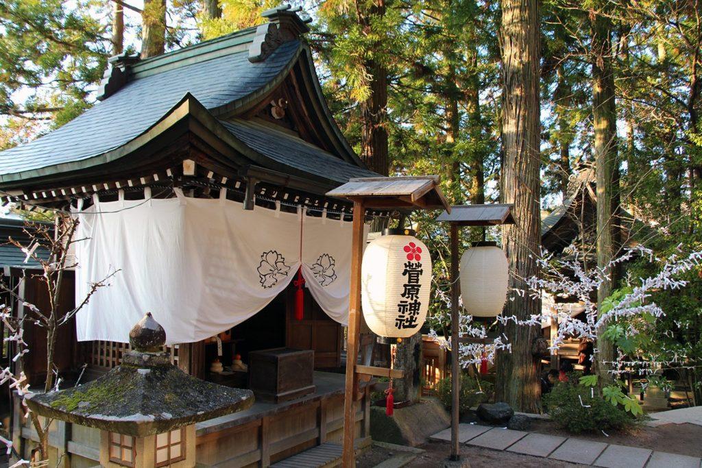 Takayama DozoDomo_13