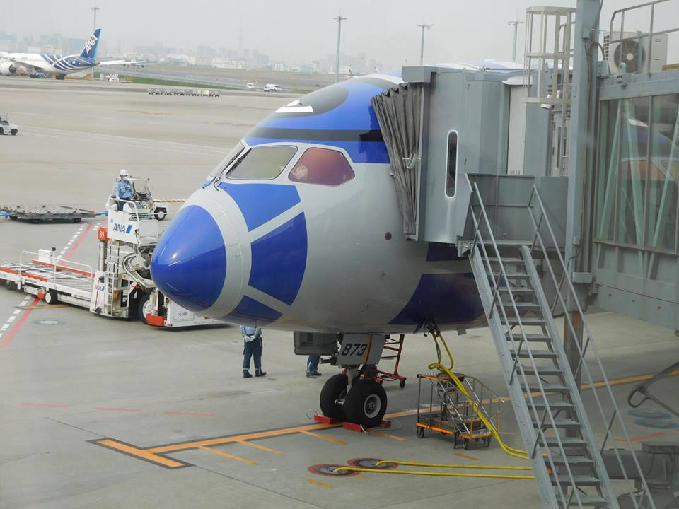 ANA Star wars boeing avion_10