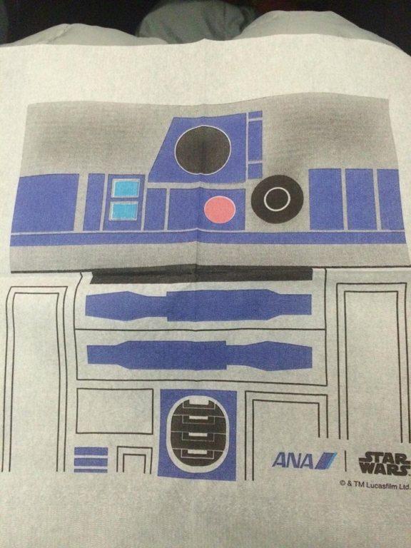 ANA Star wars boeing avion_5