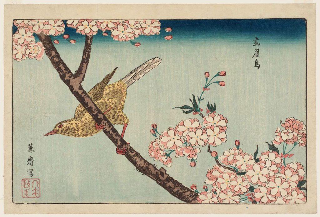estampe japonaise cerisiers en fleurs_23