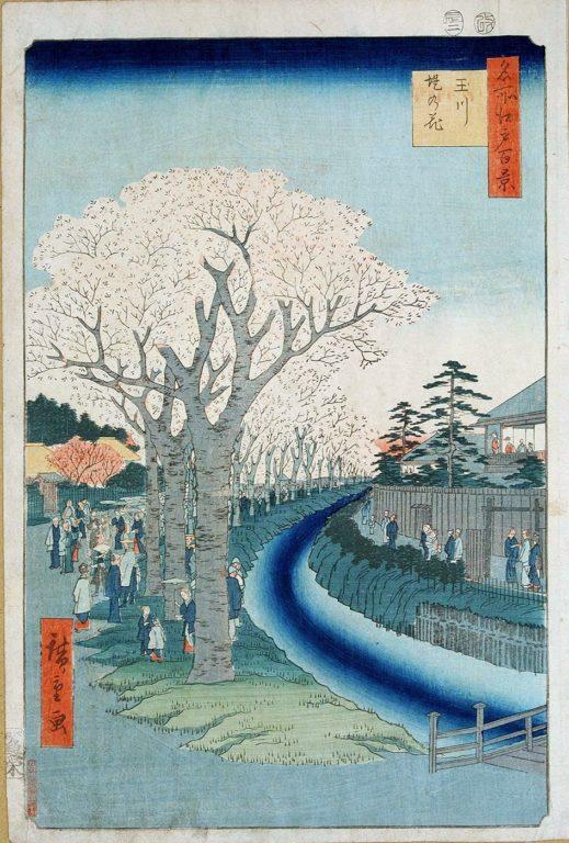 estampe japonaise cerisiers en fleurs_31