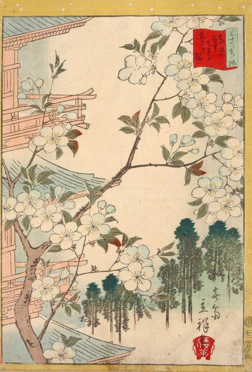 estampe japonaise cerisiers en fleurs_38