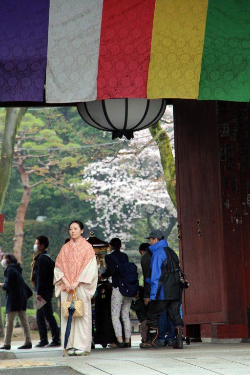 Gokokuji Tokyo Sakura 2016_1