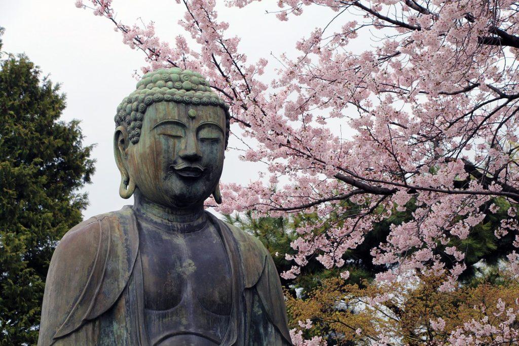 Gokokuji Tokyo Sakura 2016_12