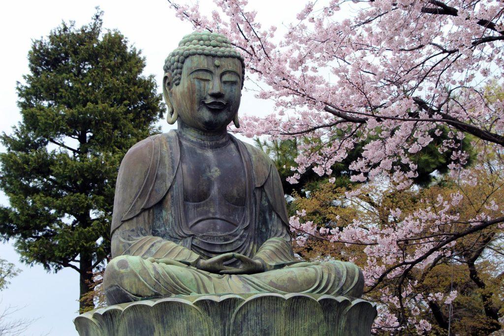 Gokokuji Tokyo Sakura 2016_13