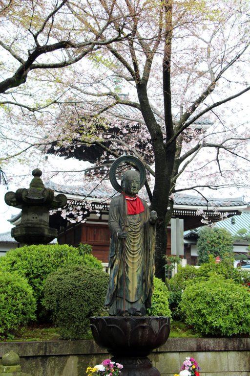Gokokuji Tokyo Sakura 2016_3