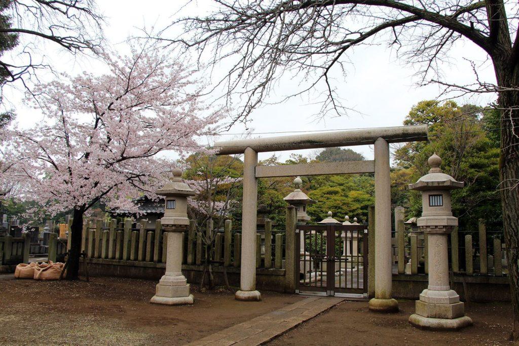 Gokokuji Tokyo Sakura 2016_6