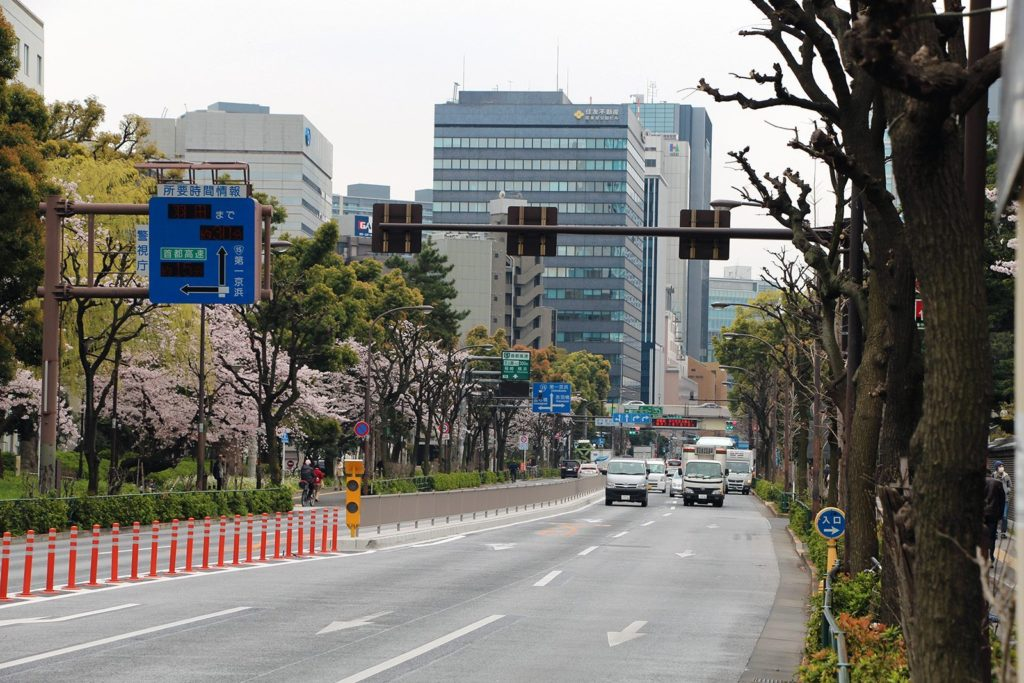 Sakura Tokyo 2016_3