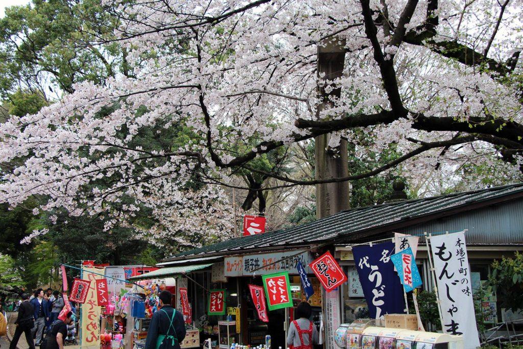 Sakura Tokyo 2016_49