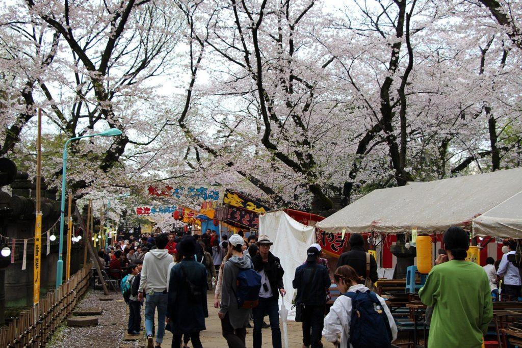 Sakura Tokyo 2016_50