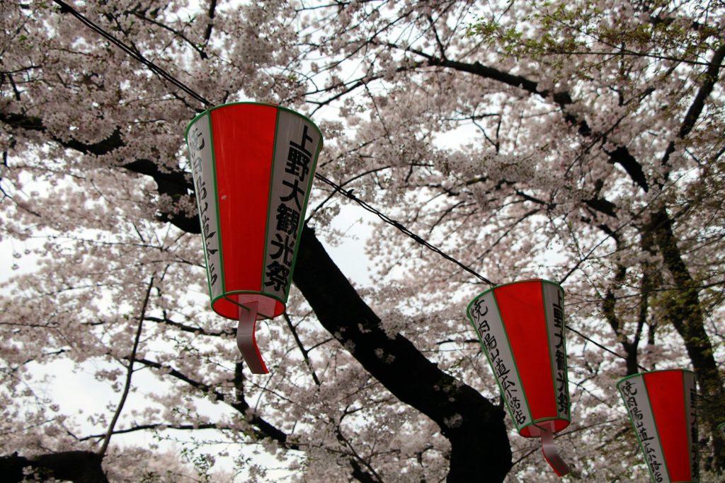 Sakura Tokyo 2016_58