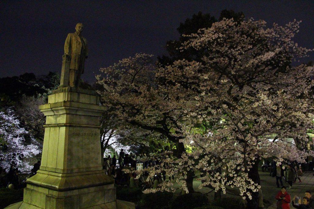Sakura night Tokyo 2016_7