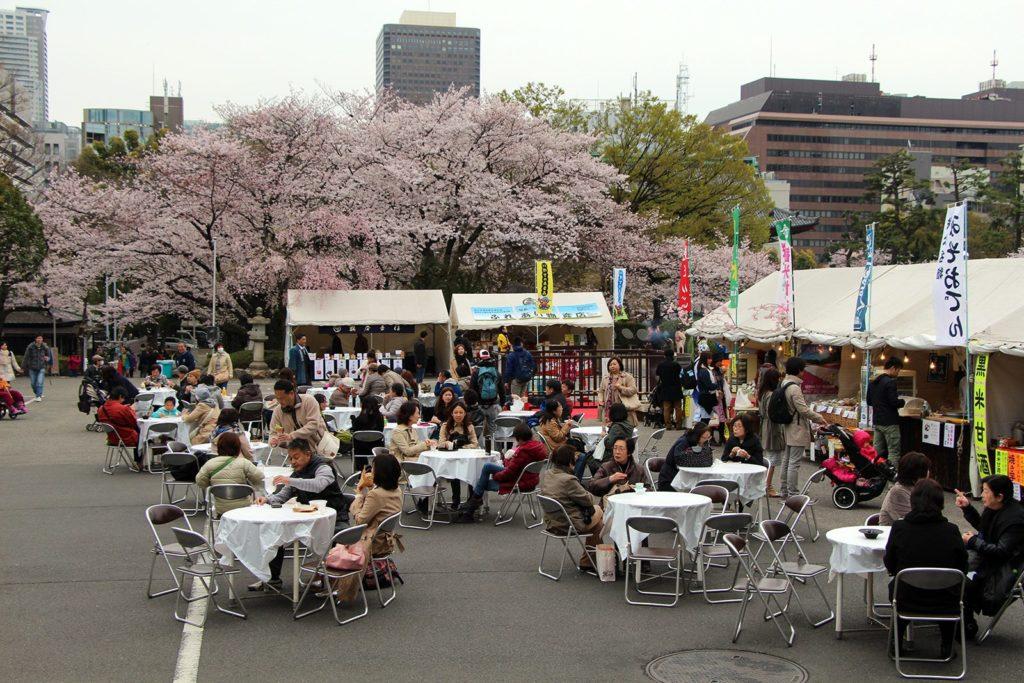 Sakura ohanami Tokyo 2016_24