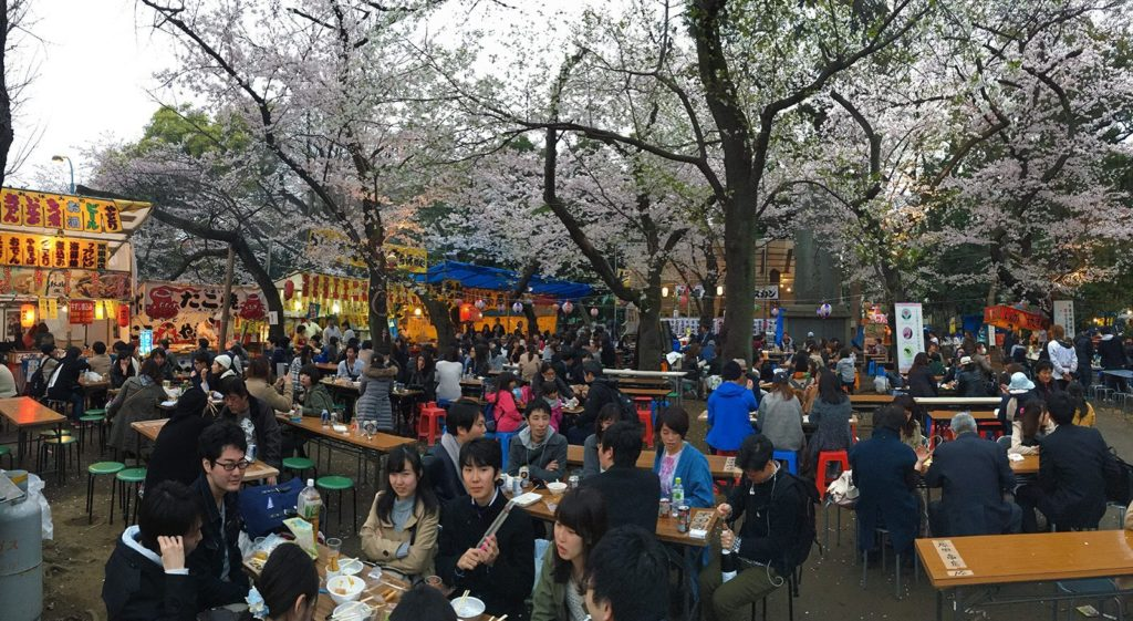 Sakura ohanami Tokyo 2016_3