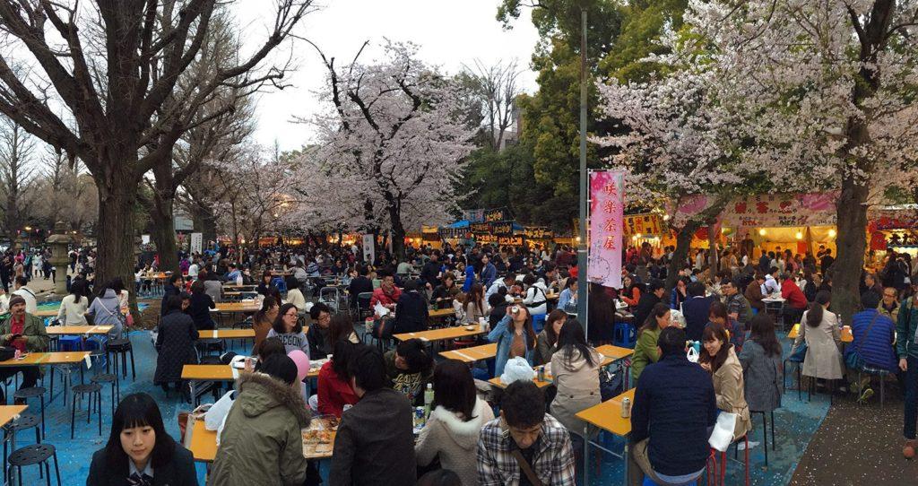 Sakura ohanami Tokyo 2016_4