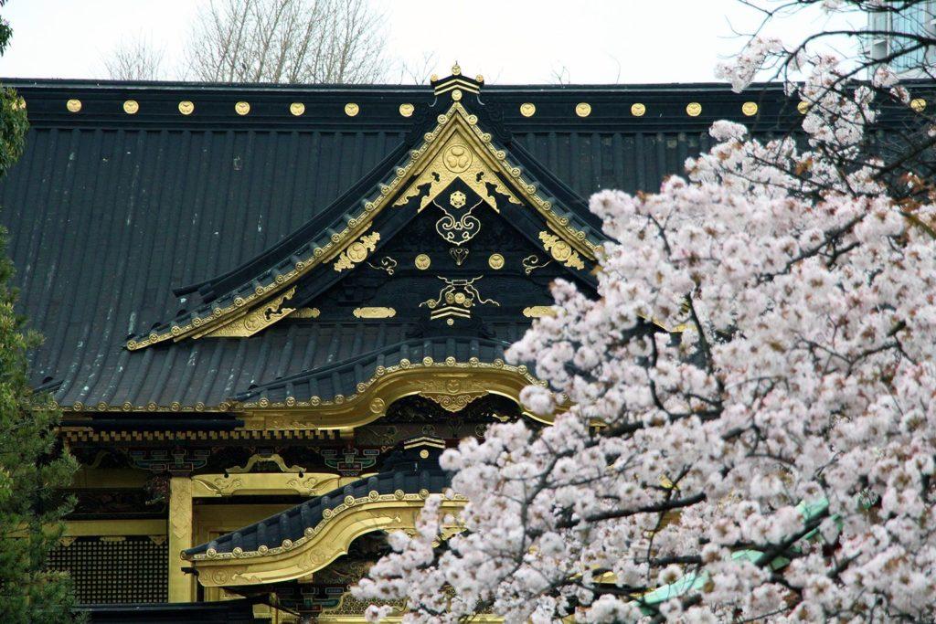 Ueno Toshogu Tokyo Sakura 2016_2