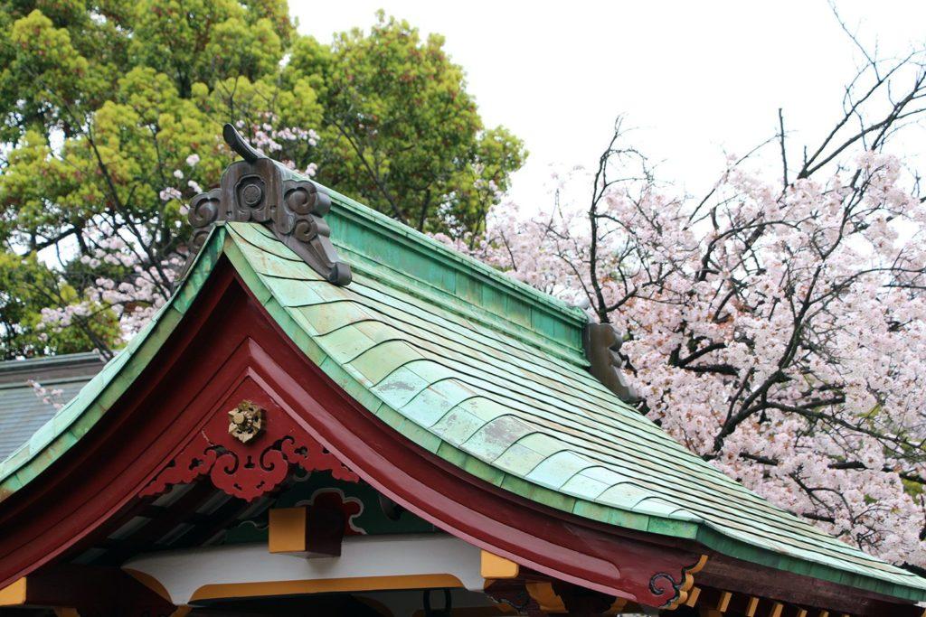 Ueno Toshogu Tokyo Sakura 2016_3