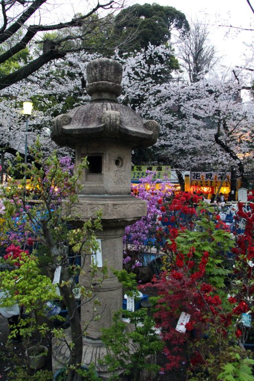 Yasukuni-jinja Tokyo Sakura 2016_10