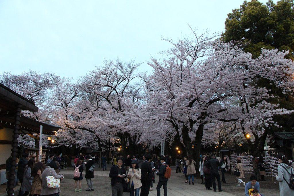 Yasukuni-jinja Tokyo Sakura 2016_13