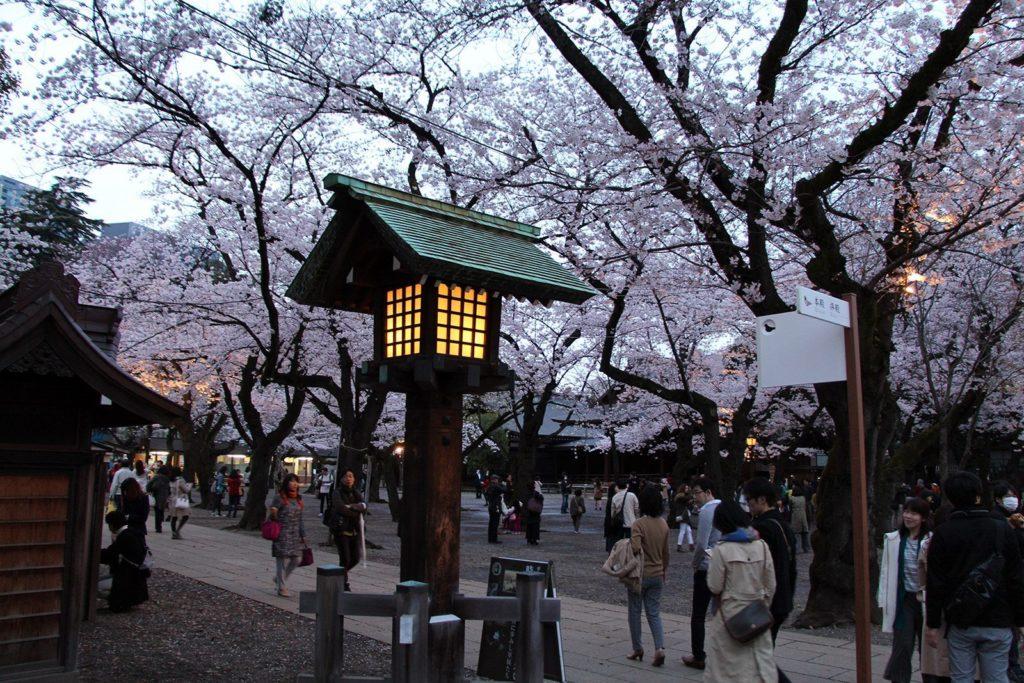 Yasukuni-jinja Tokyo Sakura 2016_14
