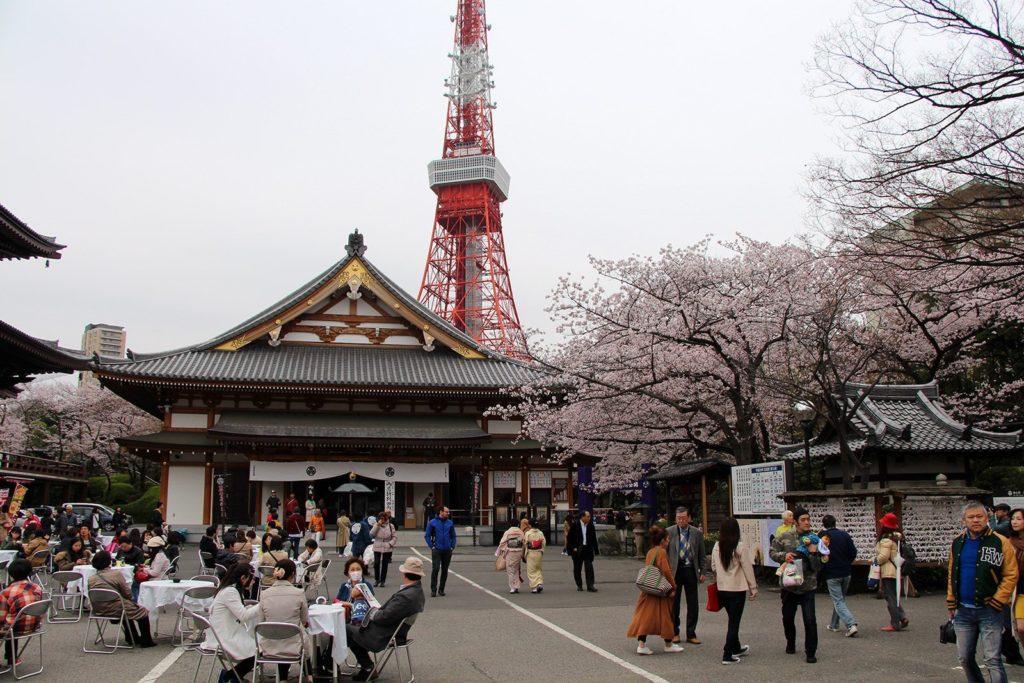 Zojo-ji Tokyo Sakura 2016_15