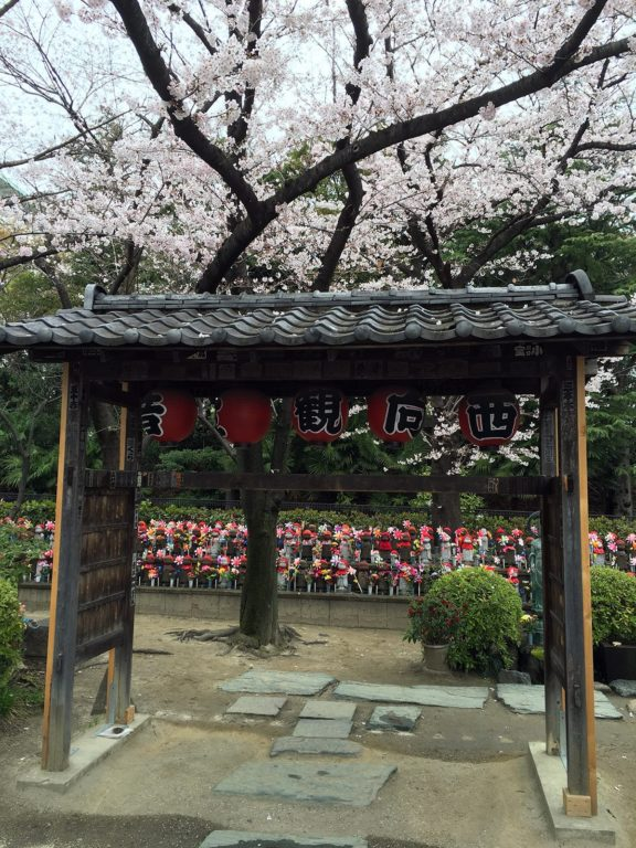 Zojo-ji Tokyo Sakura 2016_3