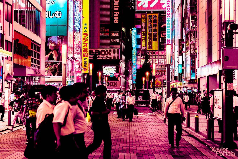 Tokyo's glow xavier portela rose_15