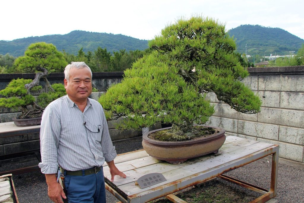 bonsai-kandaka-shojuen-takamatsu_4