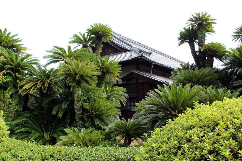 Kagawa Takamatsu_9
