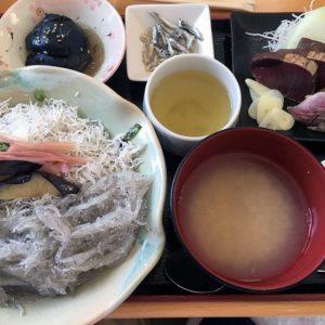 Namashirasu-don_1
