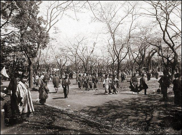 Yokohama 1908_8
