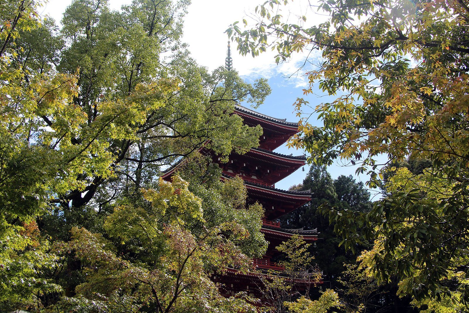 Chikurin-ji temple Shikoku_11
