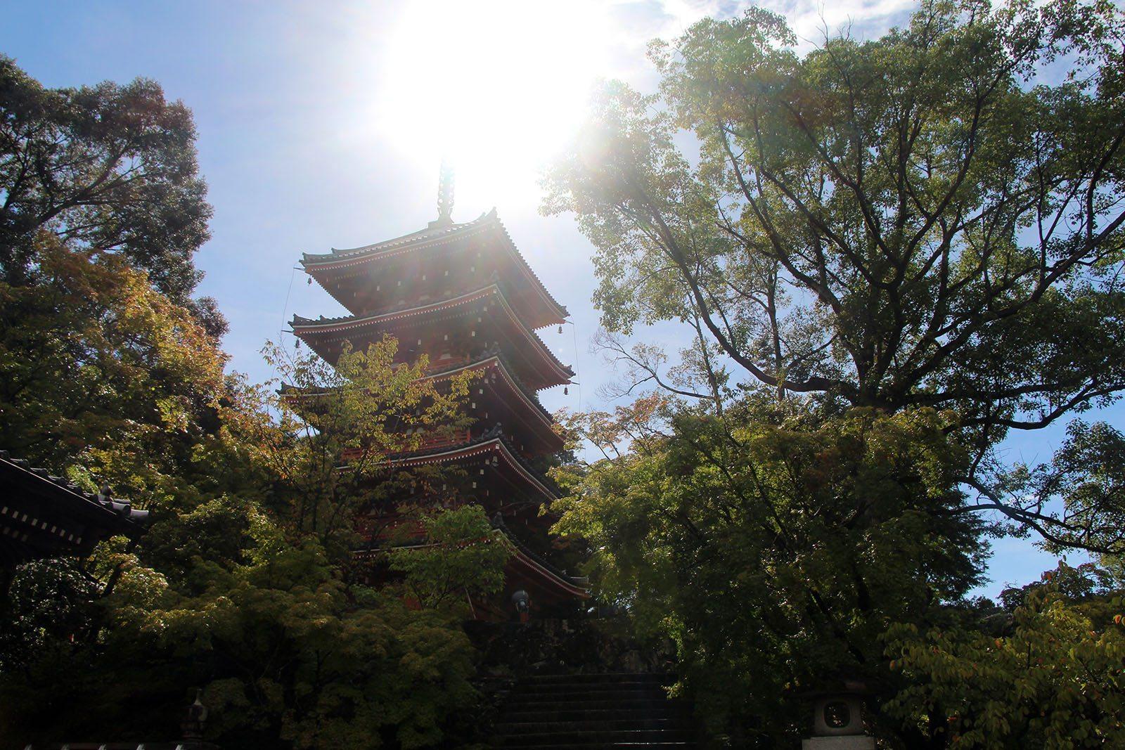 Chikurin-ji temple Shikoku_13