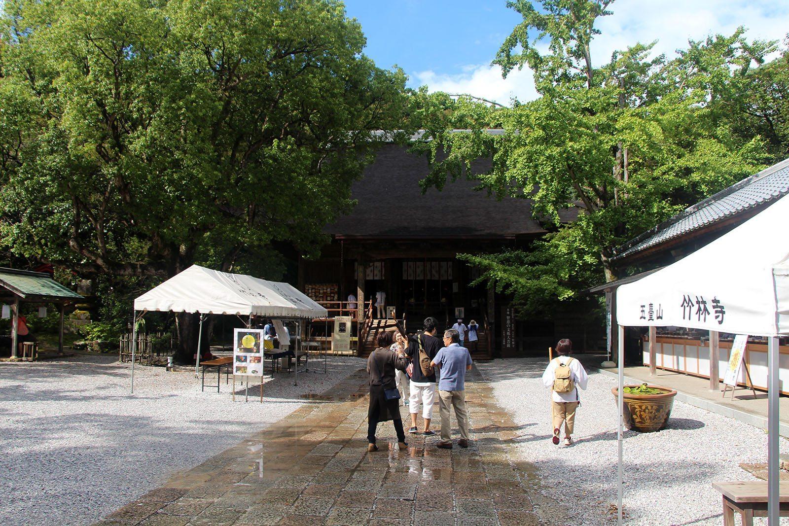 Chikurin-ji temple Shikoku_15